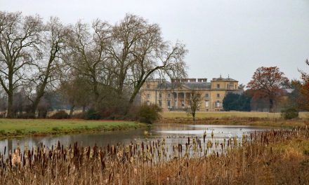 Race Report – Croome Capability Canter, 6.5 miles, 27.11.16, Croome Park, Worcestershire