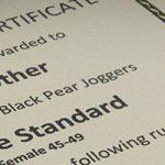 Great progress toward club standards awards